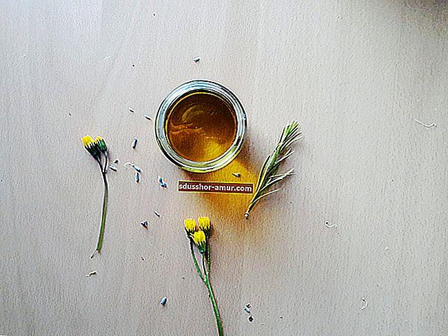 8 niesamowitych zalet oleju z orzechów laskowych dla Twojej skóry.