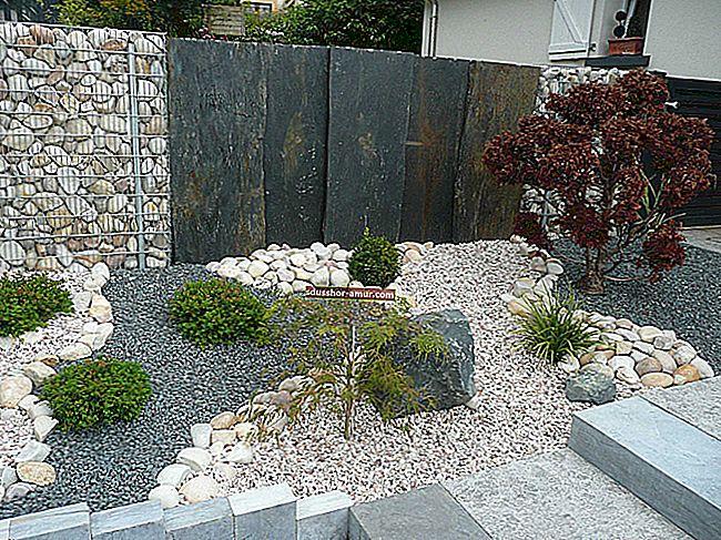Сад: 41 великая декоративная идея, раскрытая ландшафтным дизайнером.
