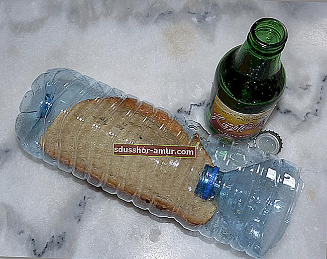 Kako se riješiti puževa? Prirodna i učinkovita zamka za pivo!