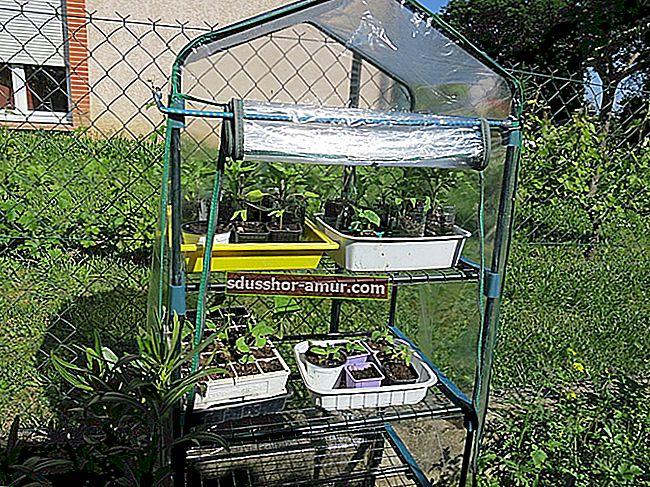 Kako napraviti mini staklenik za sadnice BESPLATNO.