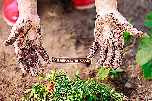 Jednostavan način čišćenja ruku nakon vrtlarenja.