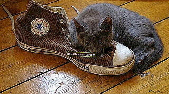 10 супер эффективных советов по удалению неприятного запаха с обуви.
