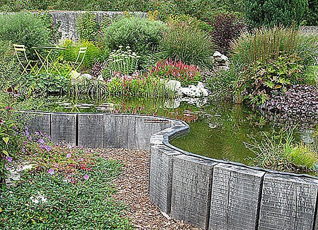 28 Pejzaž otkrio 28 velikih ideja o vrtu.