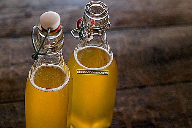 Рецепт домашнего чайного гриба: освежающий напиток с тысячей достоинств.