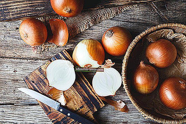 Невероятный совет: сохранять лук свежим в течение нескольких месяцев!
