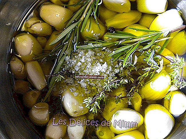 Совет хранить оливковое масло в течение многих лет!