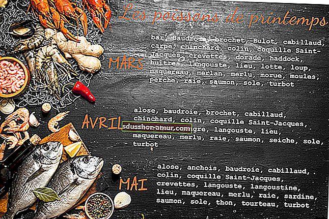 Kalendar za plaćanje JEFTINIJE Riba i plodovi mora prema sezoni.