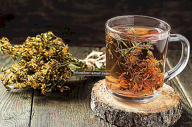 Травяные чаи, настои, отвары: разные преимущества.